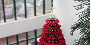Masipack monta sua já tradicional árvore de Natal