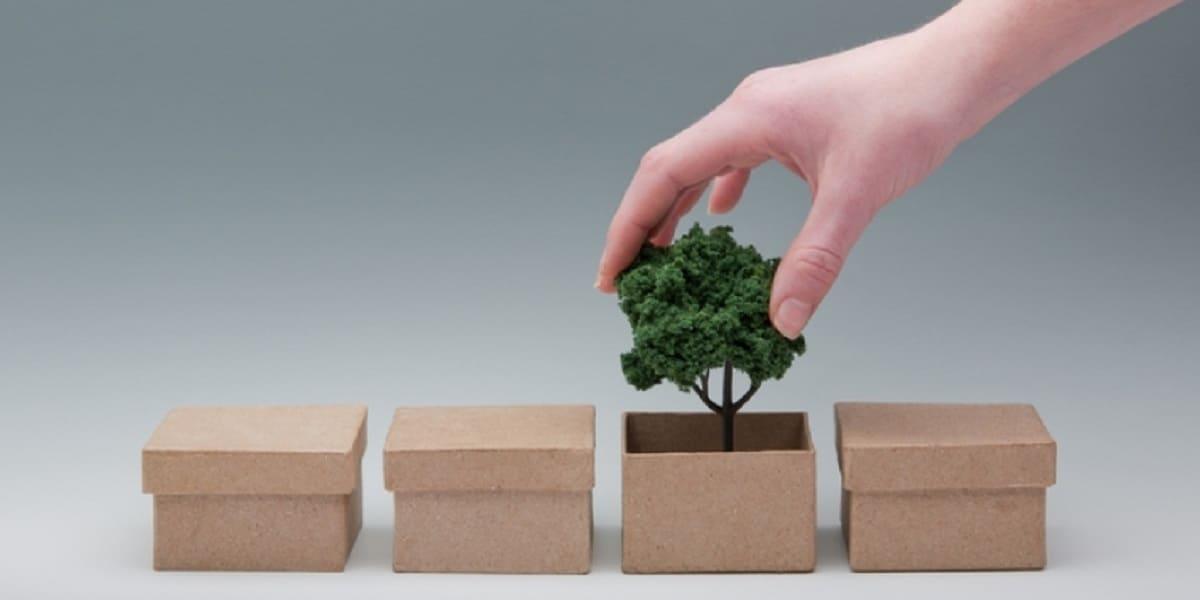 You are currently viewing A Evolução da Embalagem Sustentável